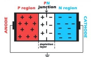 PN junction in state of thermodynamic equilibrium